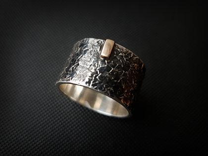 MEN'S RINGS (silver, gold)